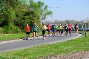 24. novosadski polumaraton, 1. april 201724npm.4